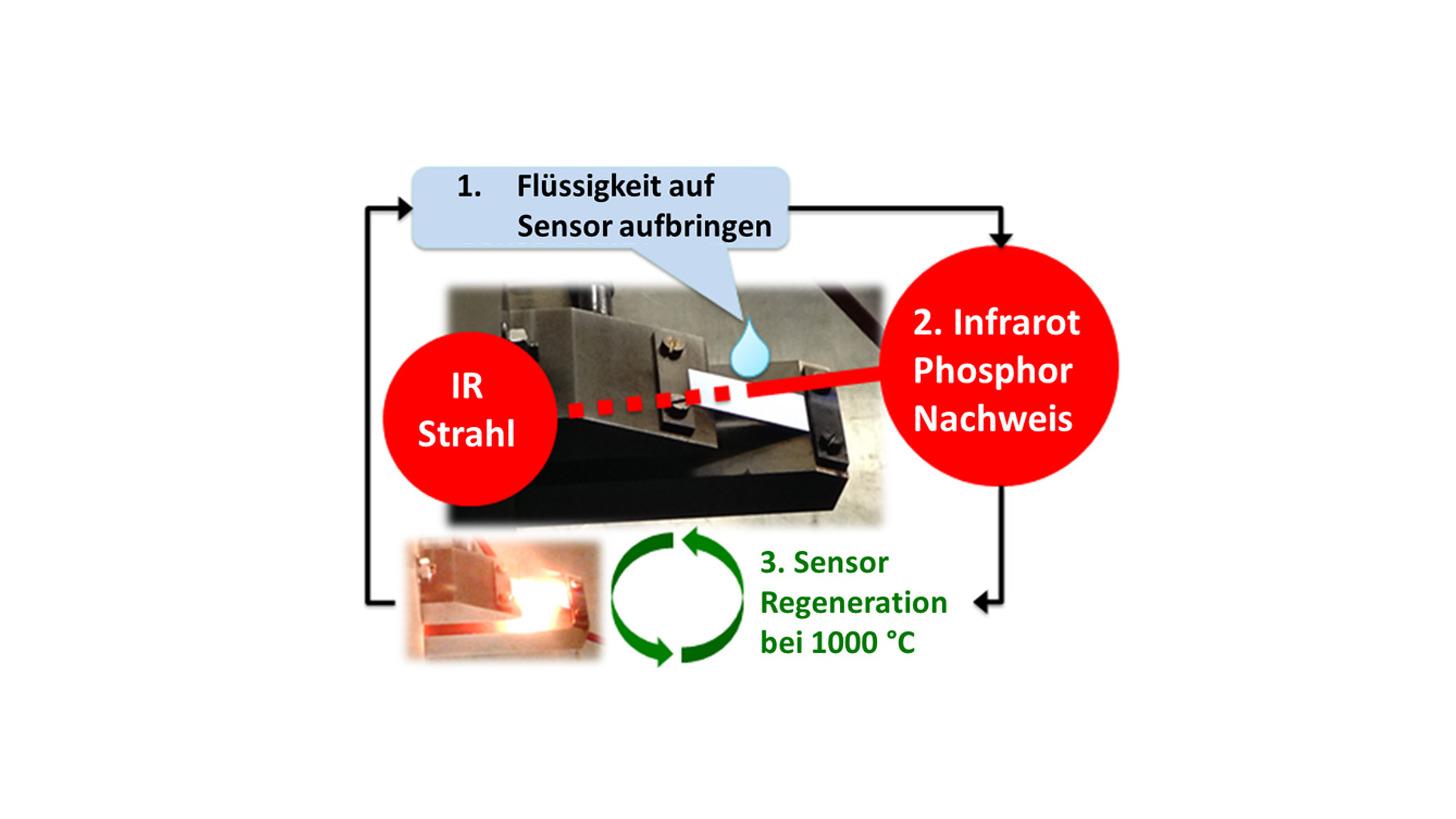 Logo Phosphorus Detector