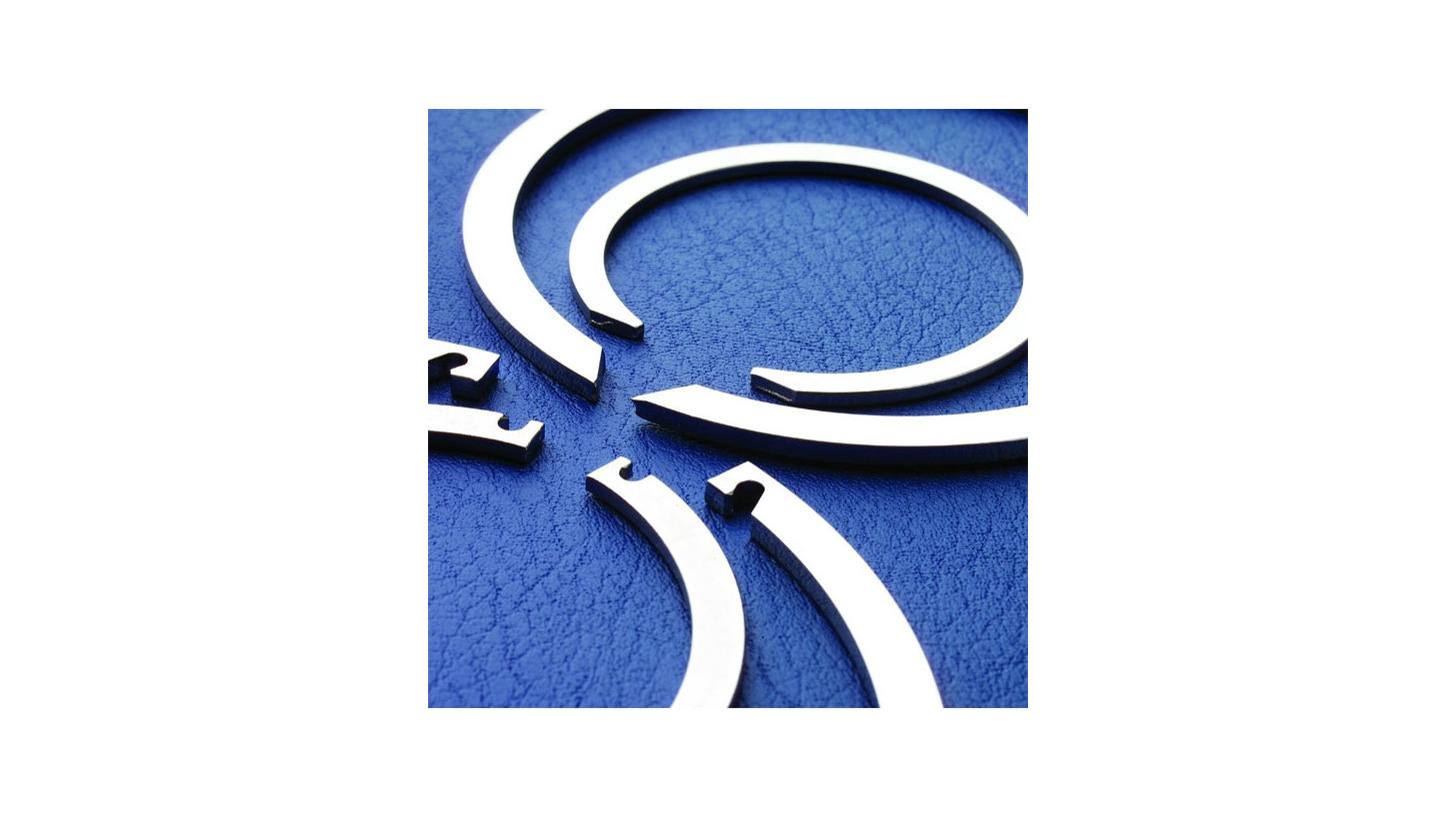 Logo Snap Rings