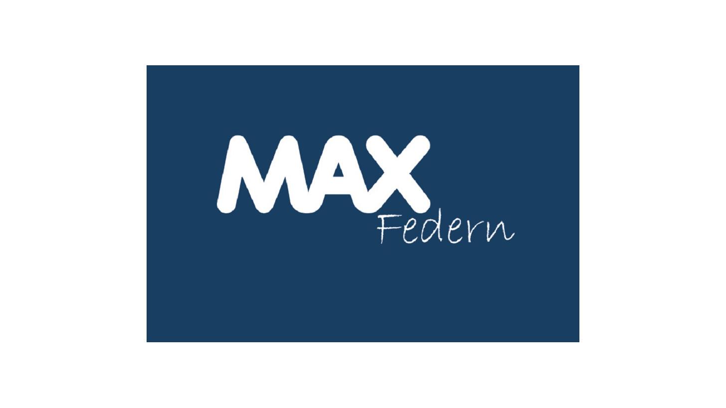 Logo MAX Springs