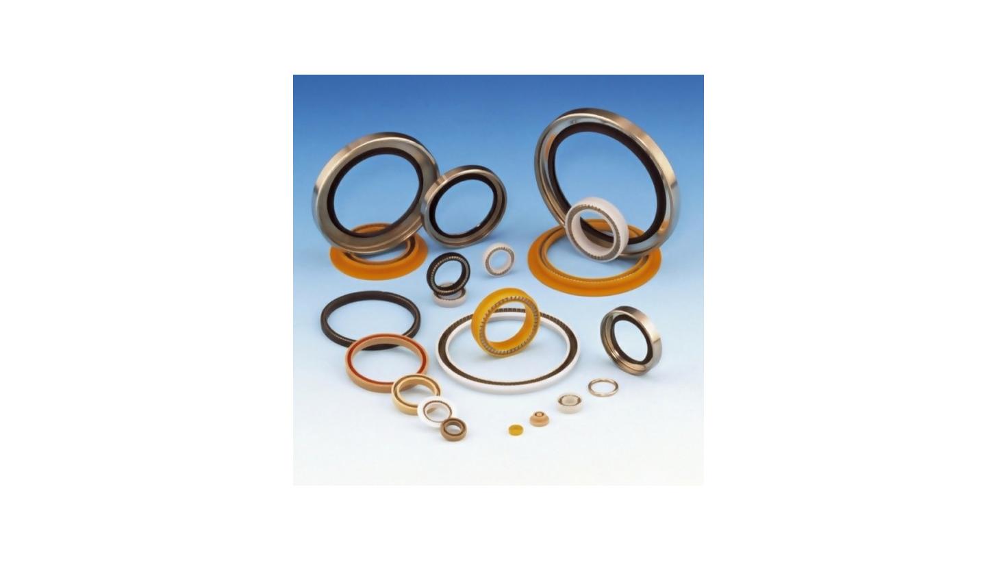 Logo Spring Energized PTFE-Seals