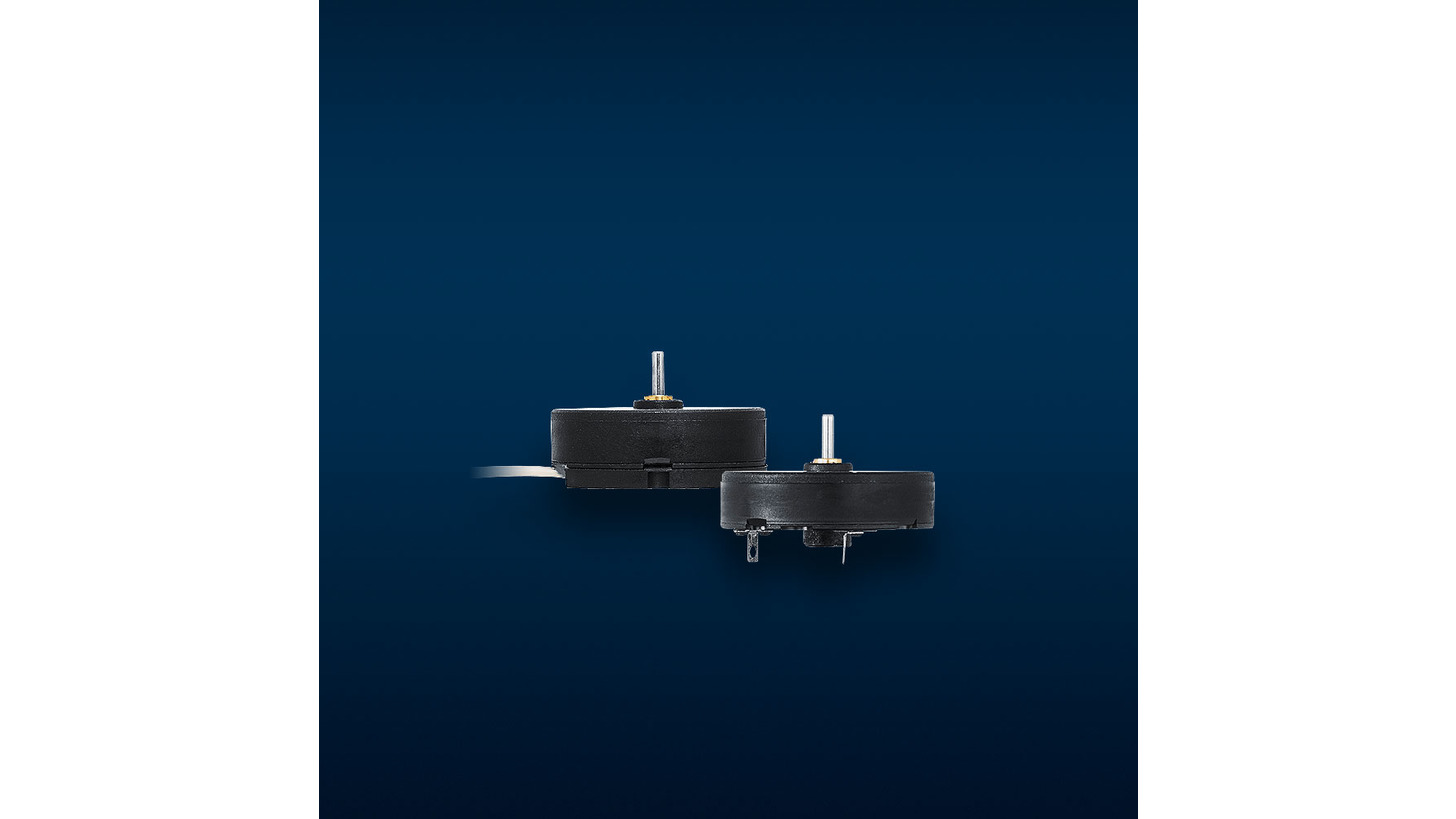 Logo Flat DC-Micromotors and DC-Gearmotors