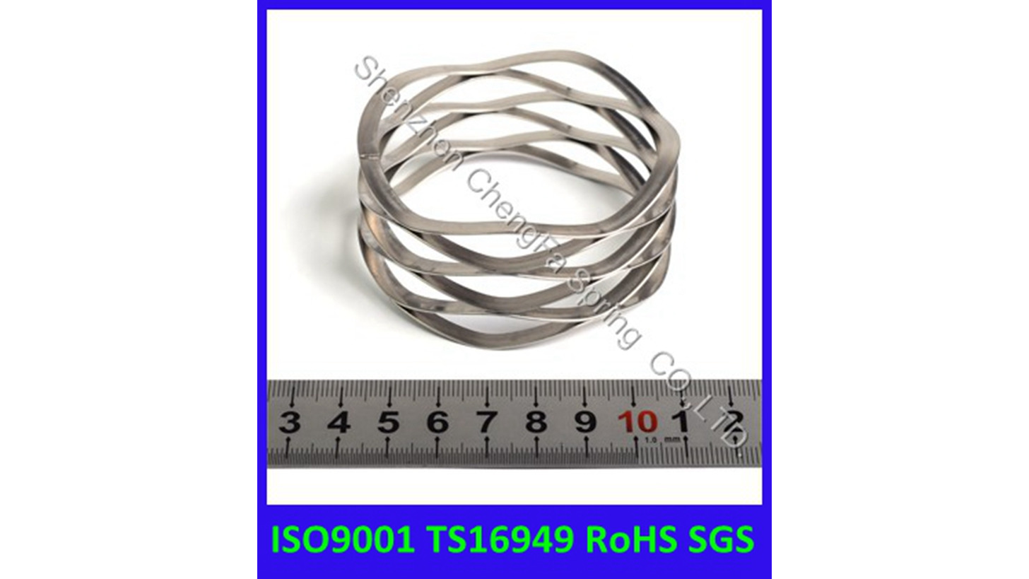 Logo Wave spring Stainless steel