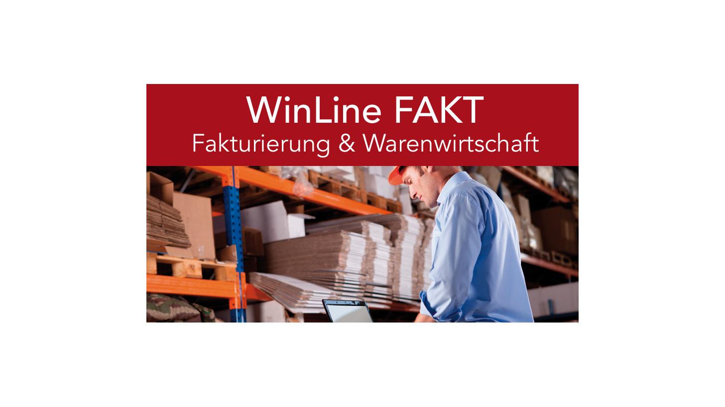 Logo mesonic WinLine FAKT