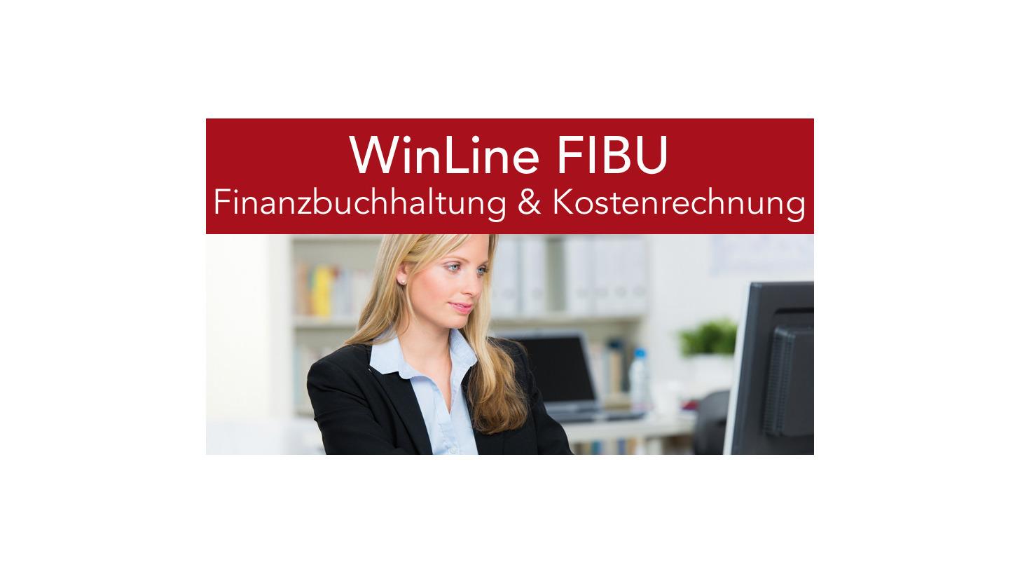 Logo mesonic WinLine FIBU