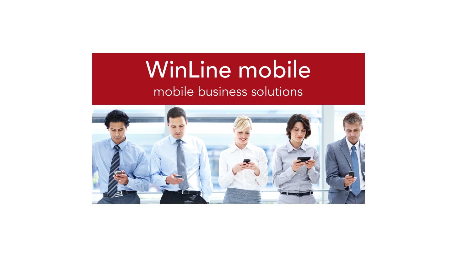 Logo mesonic WinLine mobile