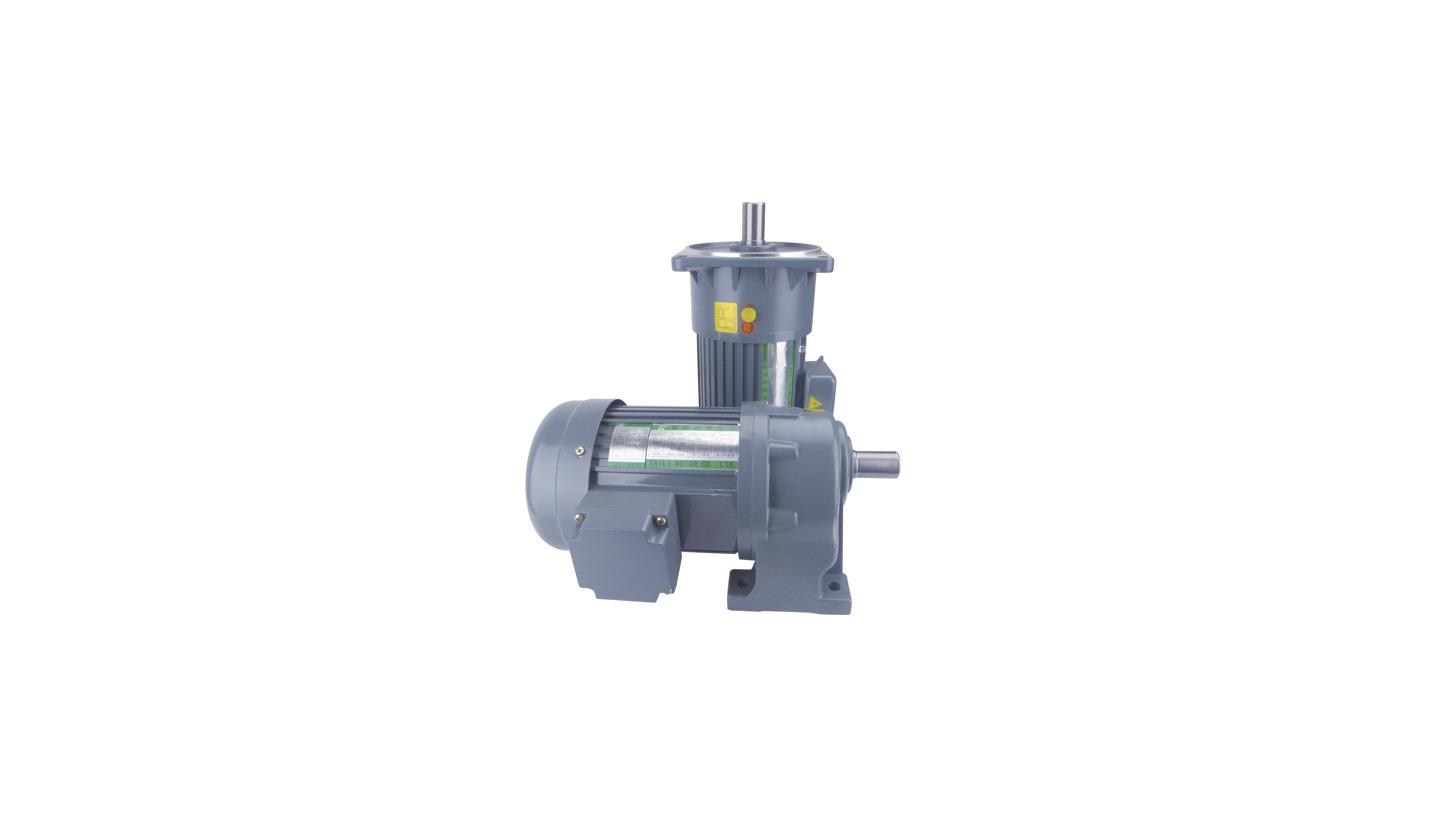 Logo Small AC Gear Motor