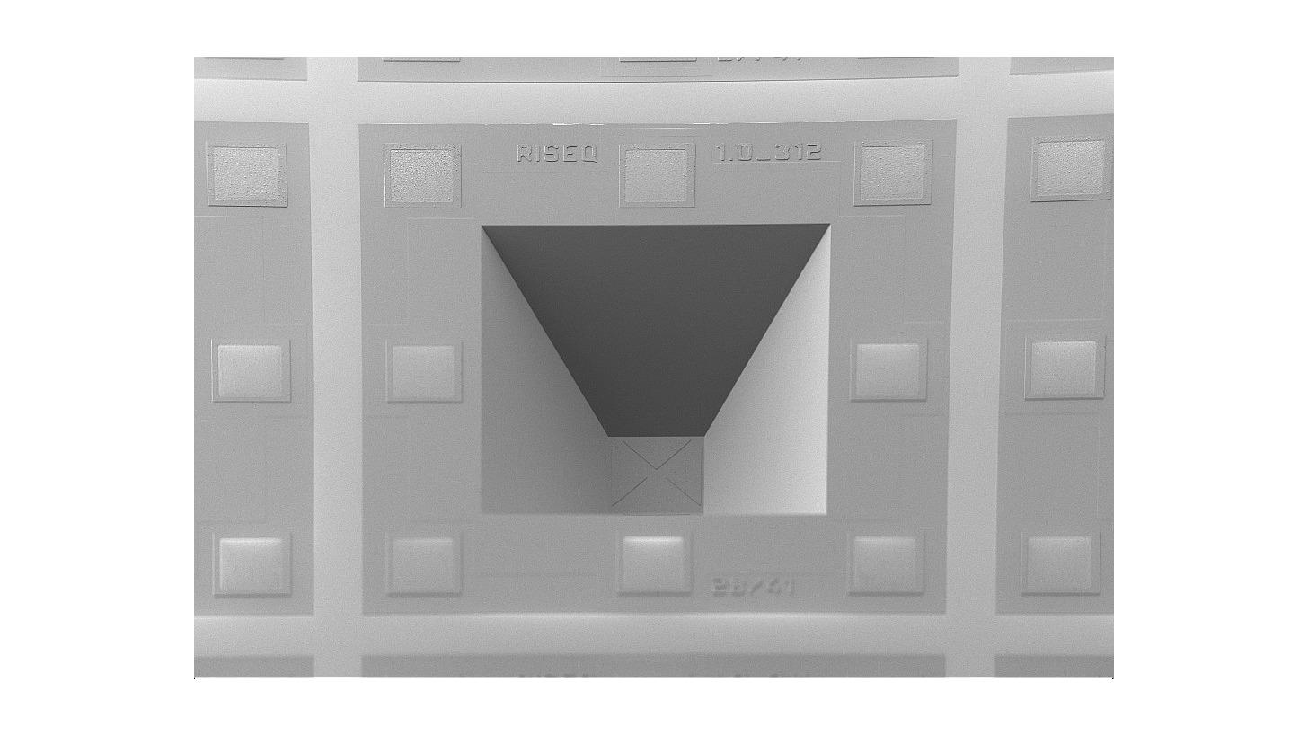 Logo RISEQ Light Sensor