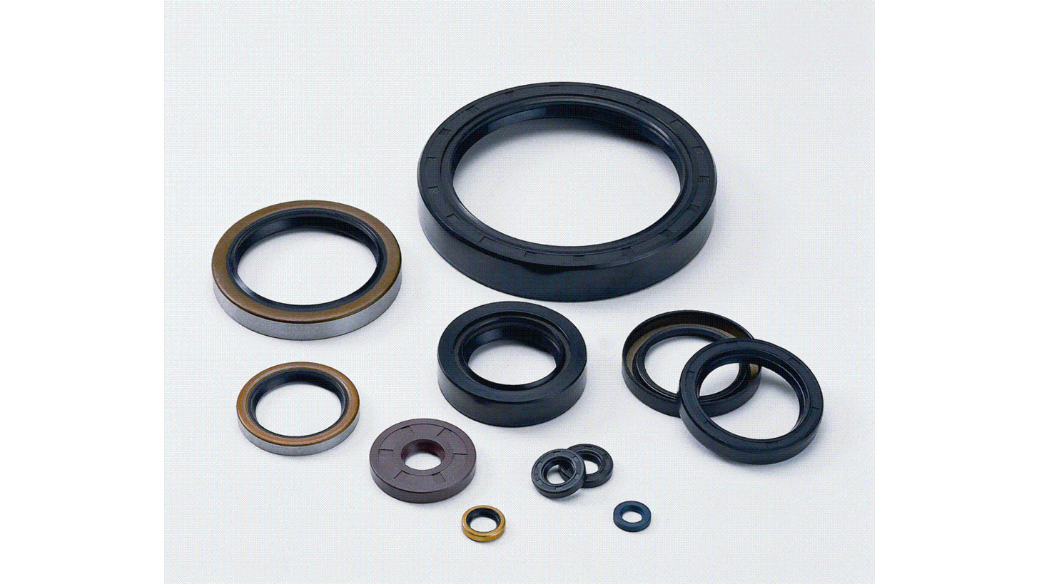 Logo Seals and gaskets for  motors