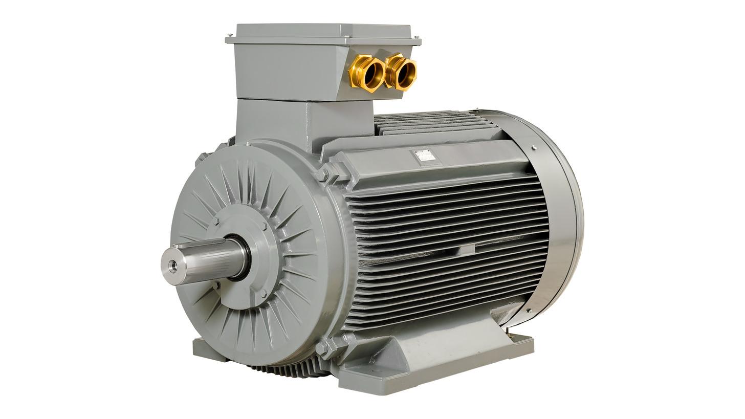Logo High Voltage Induction Motors