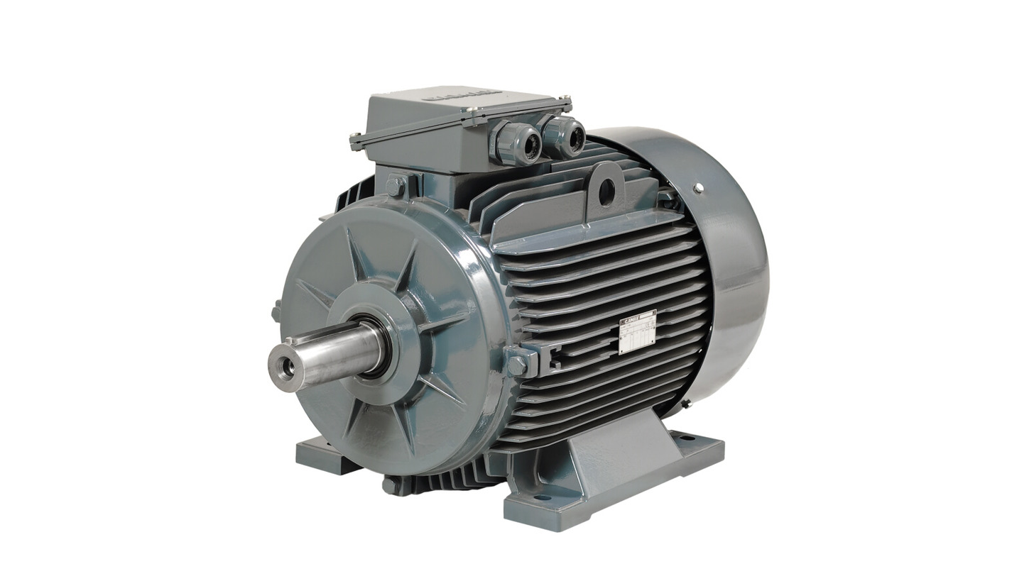 Logo Low Voltage Induction Motors