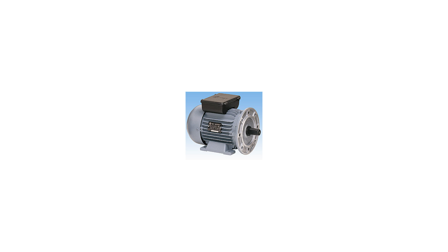 Logo Single Phase Induction Motors