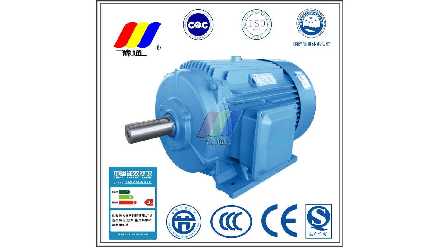 Logo YE2/YE3 High Efficiency Motor