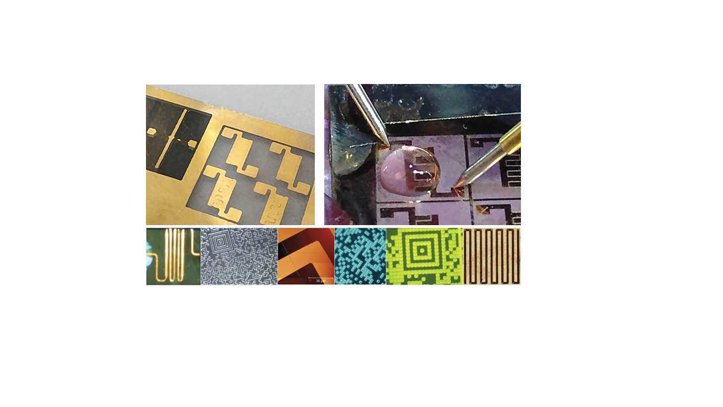 Logo Microelectrodes and Patternig