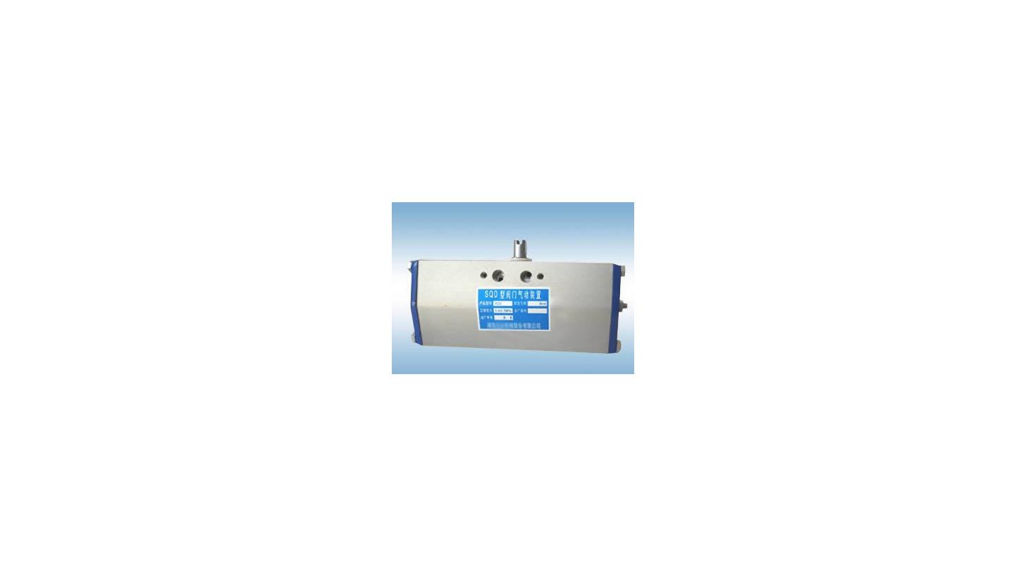 Logo SQD Pneumatic Actuator