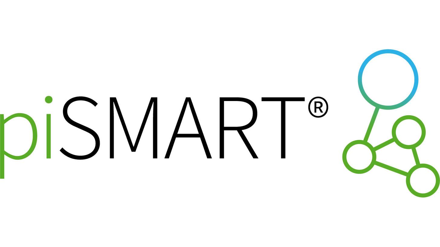 Logo piSMART® Industry 4.0 Vacuum solutions