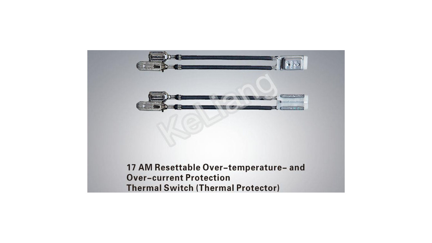 Logo 17AM Resettable Thermal Switch