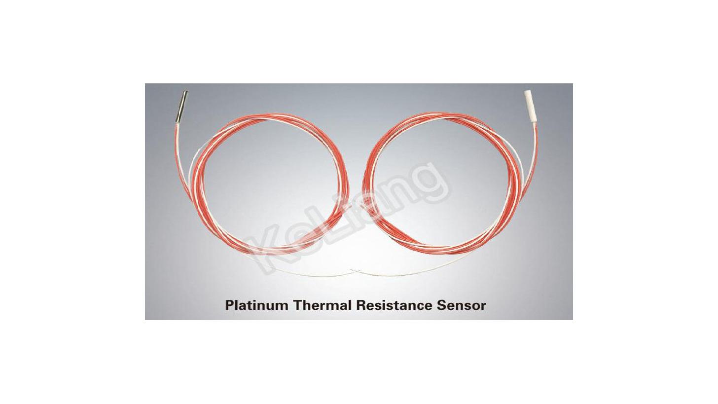 Logo Platinum Thermal Resistance Sensor (RTD)