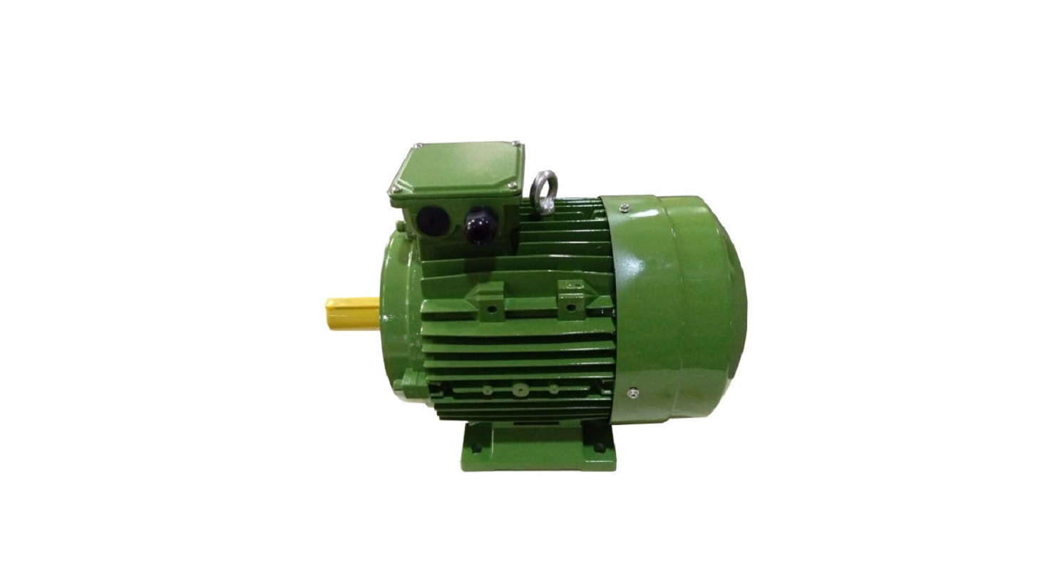 Logo YE2 High Efficiency Induction Motor