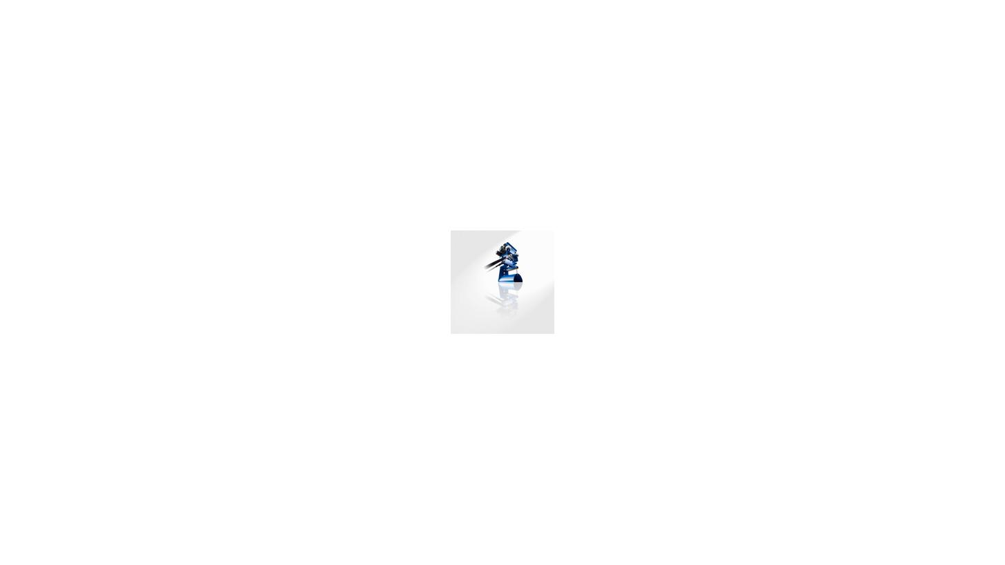 Logo Leitungswagen-Systeme