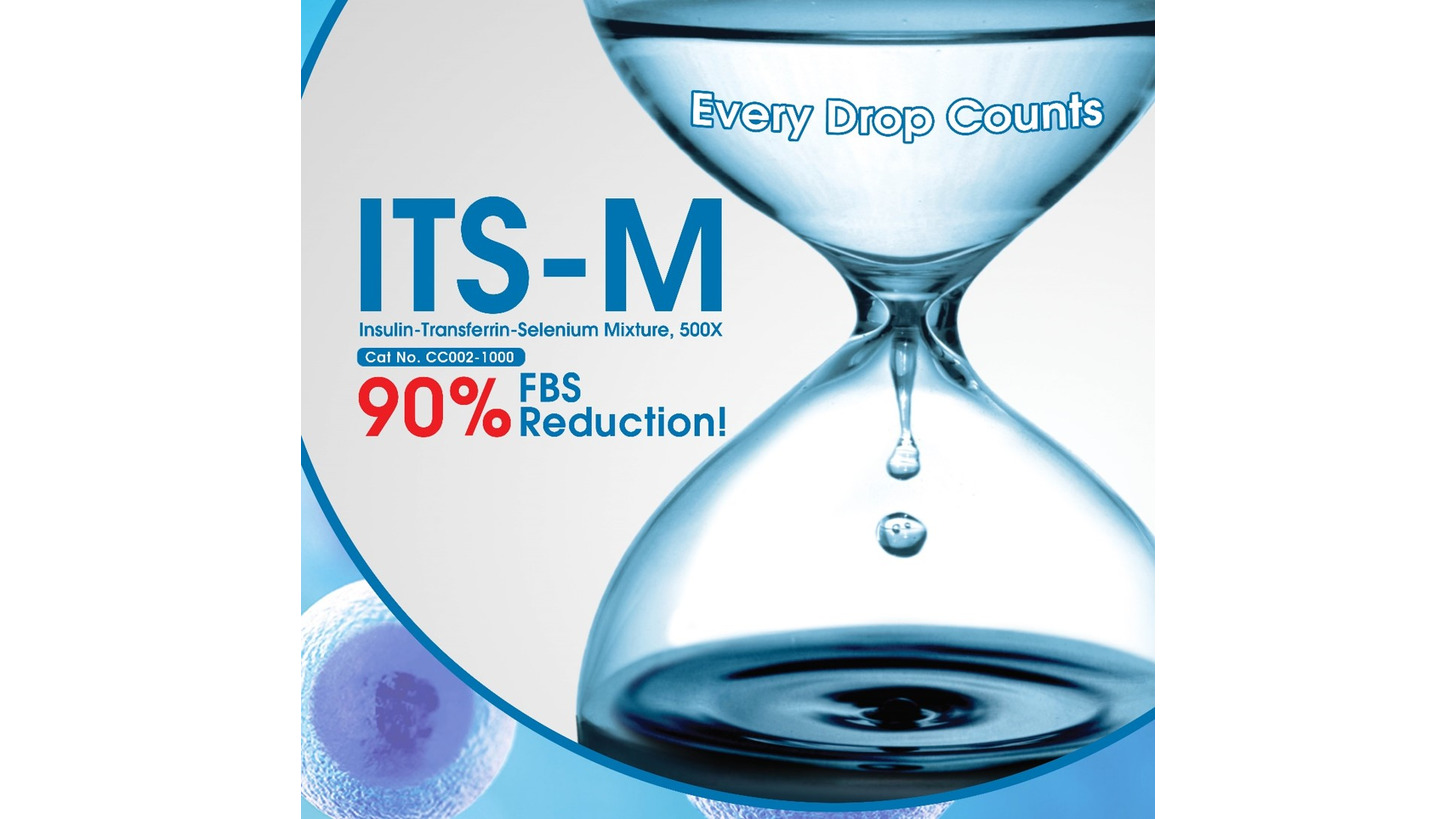 Logo ITS-M