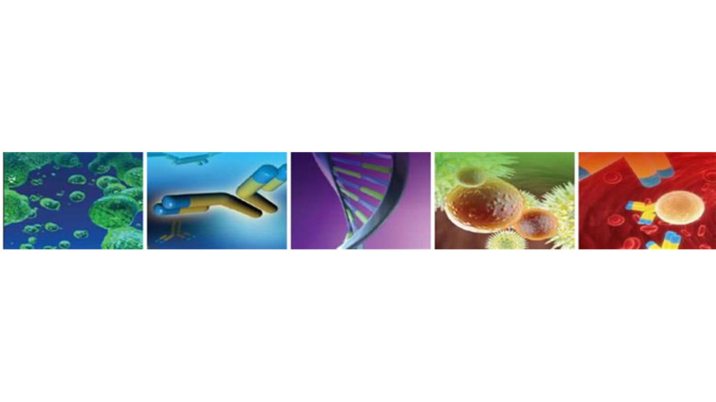 Logo Antikörper, Proteine, Blocking Reagents