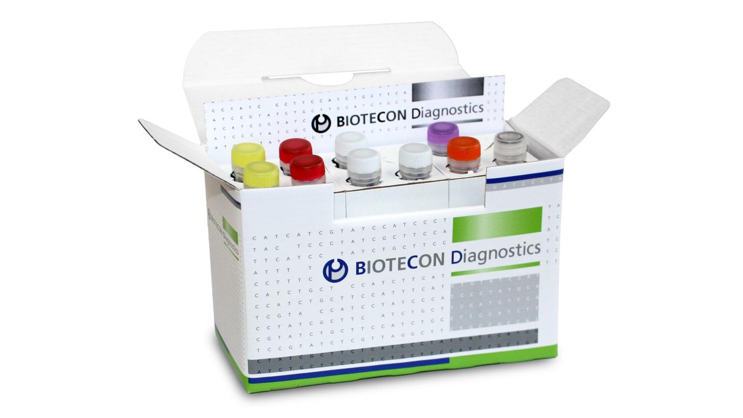 Logo foodproof® Norovirus Detection Kit