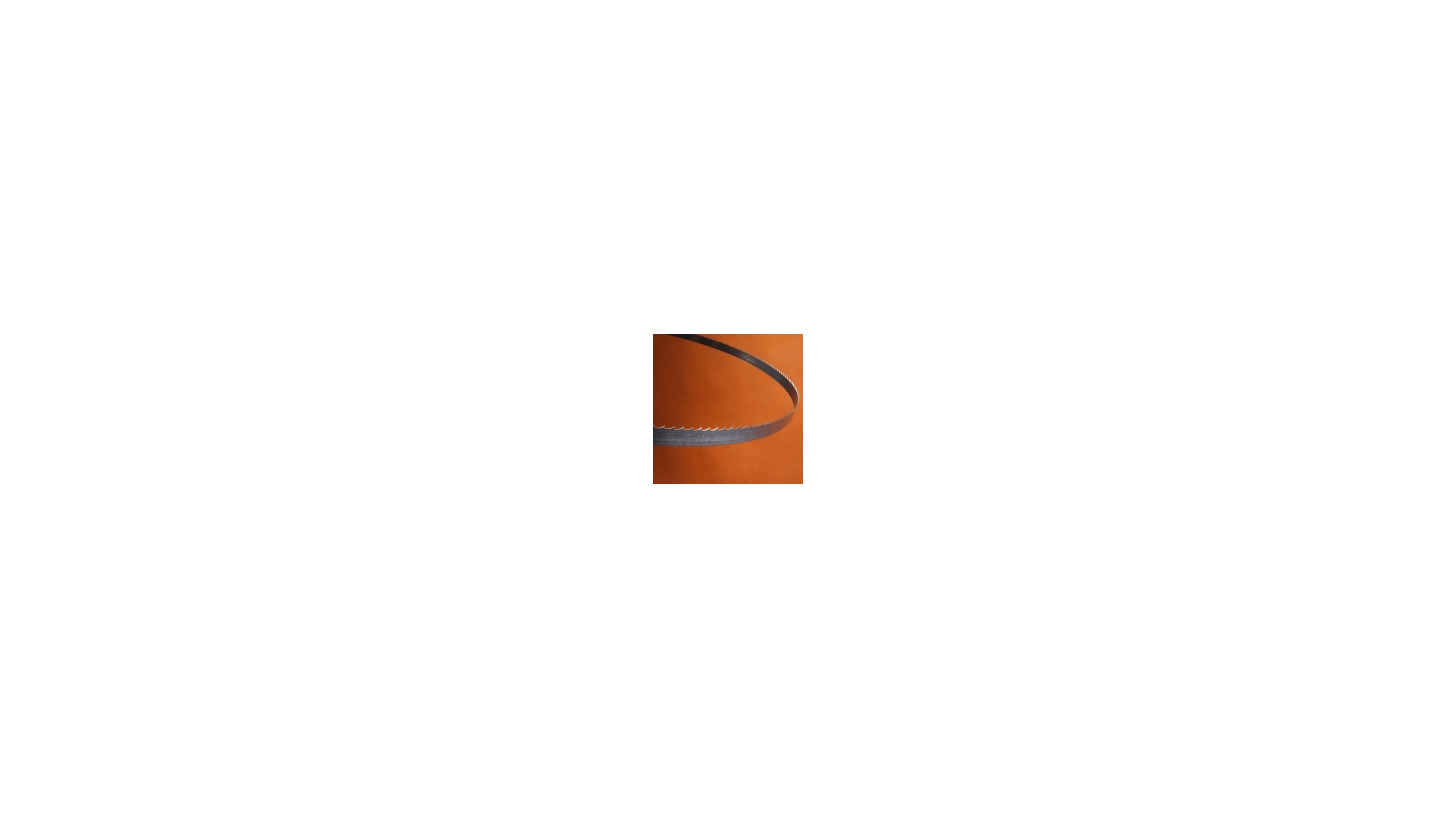 Logo Tischlerbandsägen