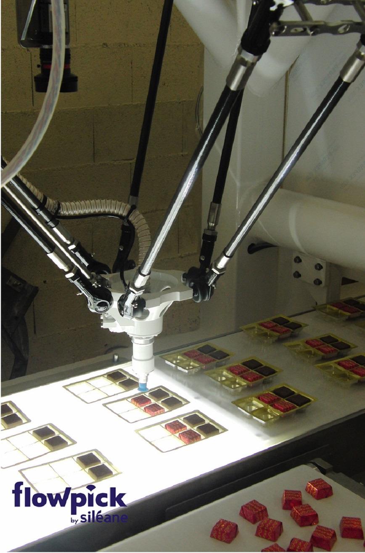 Logo FLOWPICK Pick & Place Roboter Maschinen