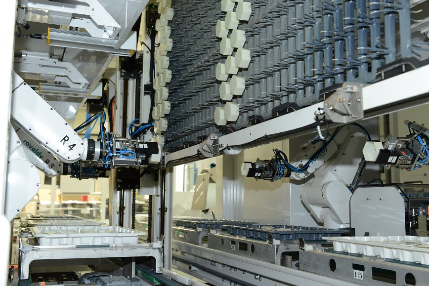 Logo ROVALDY Roboter für Oberflächentechnik
