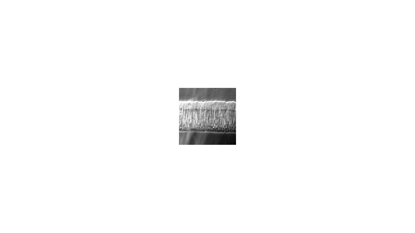 Logo Kratzfeste Beschichtungen